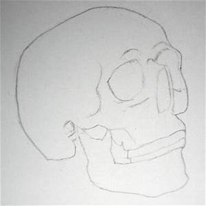 Pencil Drawing Of A Skull, Easy Steps On How To Draw A Skull