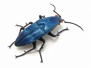 glass sculptor Wesley Fleming - artwork, 'Silver Blue Beetle'