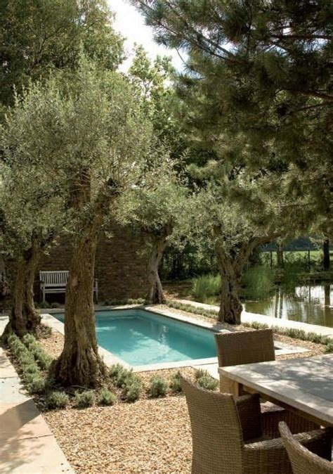 olive garden stapleton 25 best ideas about decomposed granite on