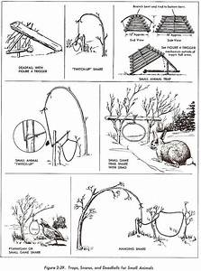 Wilderness Survival Techniques Giode  Food  Gear  Medicine