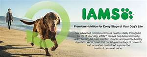 landing pages brands iams dog