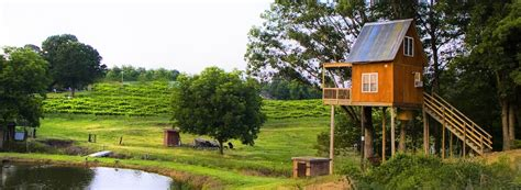 Treehouse Winery-french Broad Vignerons
