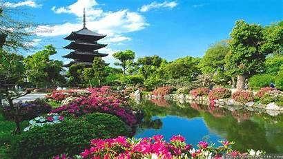 Japanese International Spring Japan Wallpapers Students Scholarships