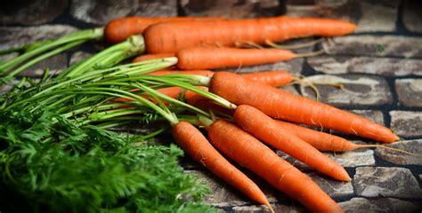 cuisiner avec des restes cuisiner avec les restes de légumes une bonne idée anti
