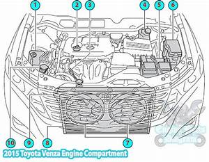 2015 Toyota Venza Engine Compartment Parts Diagram  1ar