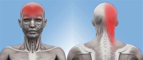 chiropractor cranston richiropractic care  common types