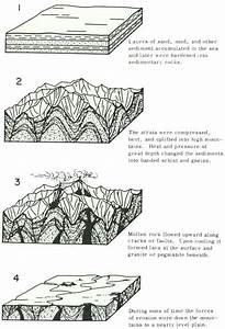 Image Result For Sedimentary Rocks Diagram
