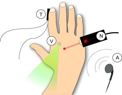 Experimental procedure. Nociceptive stimuli (N) were brief pulses of...   Download Scientific ...