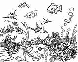 Ocean Coloring Pages Sea Scene Printable Colouring Realistic Underwater Bestcoloringpagesforkids Under Animal Adult Sheets Getcolorings Easy Turtle sketch template