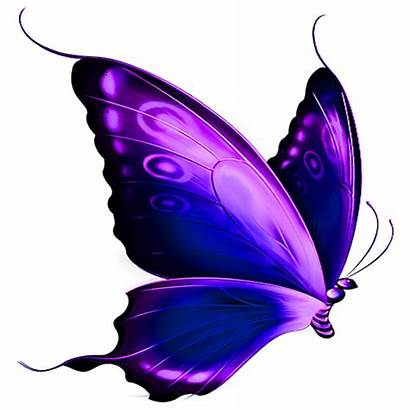 Butterfly Purple Favicon Cropped Health