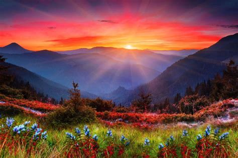Cool Sunset Backgrounds ·① WallpaperTag
