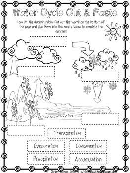 water cycle freebie school water cycle weather science science education