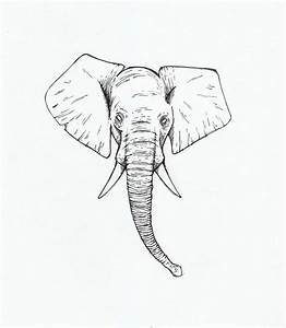 Elephant Head Drawing at GetDrawings.com | Free for ...