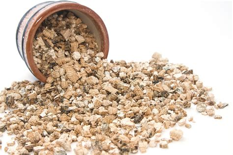 perlite  vermiculite    difference updated