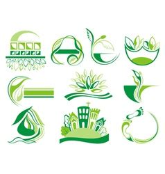 Nature Infographic Royalty Free Vector Image Vectorstock
