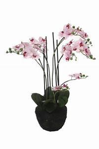 Pot Pour Plante Intérieur : plante artificielle orchid e en pot pour int rieur 90cm cr me fuchsia ~ Melissatoandfro.com Idées de Décoration