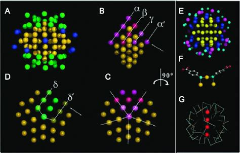 Diagram Of Atom Gold by Packing Of Gold Atoms In The Nanoparticle And Sulfur Gold
