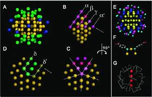 Packing Of Gold Atoms In The Nanoparticle And Sulfur