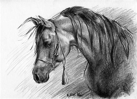 foto de Arab w sznurkach Magdalena Muraszko Kowalska rysunki