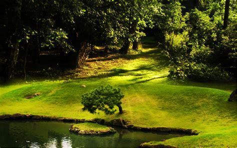 Nature Free Wallpaper by Free Wallpaper Nature Wallpapersafari