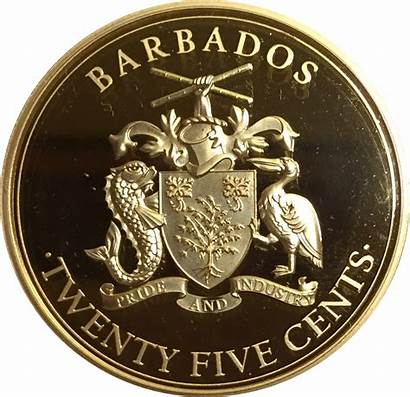 Queen Barbados Revenge Anne Pirates Blackbeard Ship