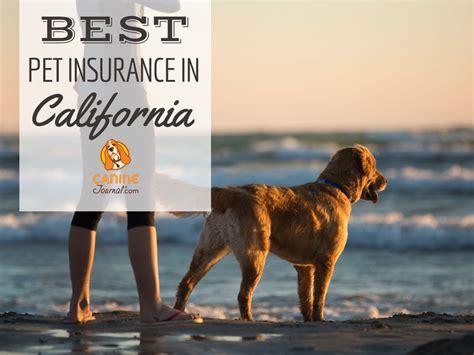 › top pet insurance companies 2020. Best Pet Insurance In California: Find The Best Plan & Price in 2020   Best pet insurance, Pet ...
