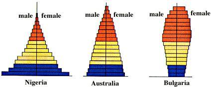 Age Structure Diagram by Davis Jefferson High Teachers Latia Bracy Assignments