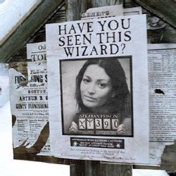 wanted wizard photofunia  photo effects