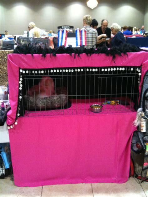 cat show drapes show cat cage curtains purrelli persians exotics
