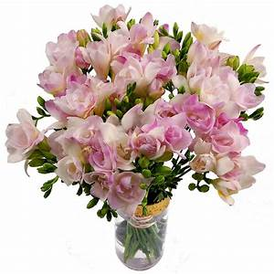 Pink Freesia - fabulous fragrant flowers delivered to any ...