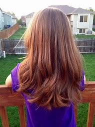 Little Girl Hairstyles for Long Thick Hair