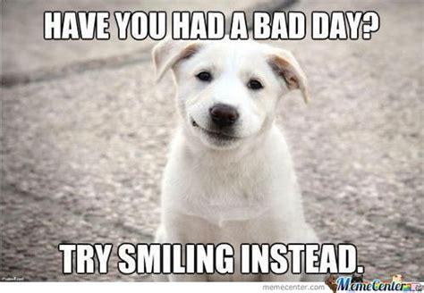 Smiling Dog Meme - smiling dog memes best collection of funny smiling dog pictures