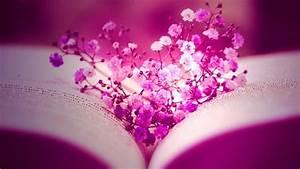 Pink Flower Desktop Wallpaper ·①