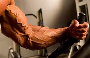How To Increase Vascularity And Get Veins In Arms