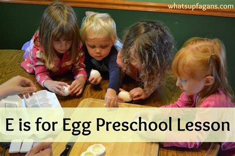 e is for egg preschool lesson plan on learning 490 | 4611aa9c1fd705e0833639a5f9ce2f74