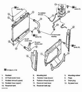 2004 Nissan Armada Serpentine Belt Routing And Timing Belt Diagrams