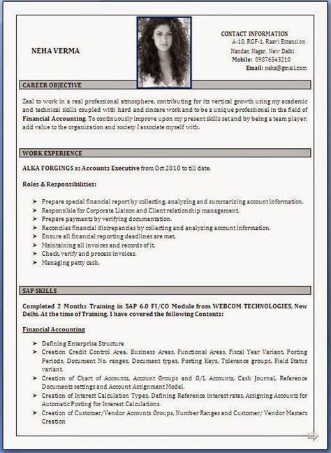 Cv Resume Format by Best Cv Sles