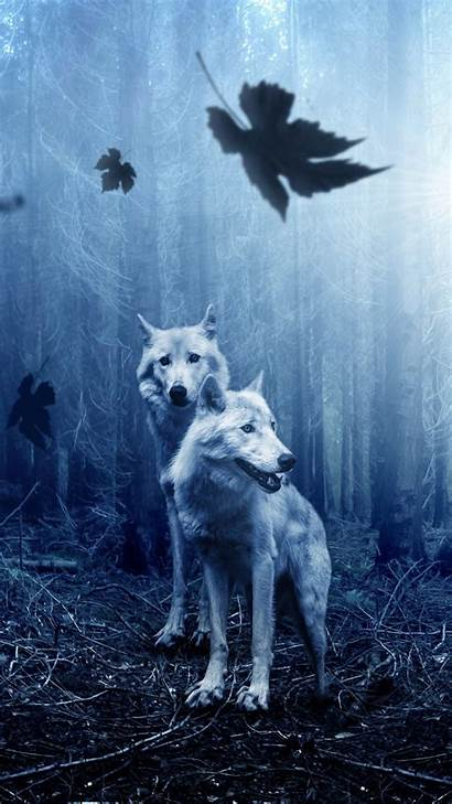 4k Wolves Forest Wallpapers Iphone Android 1080