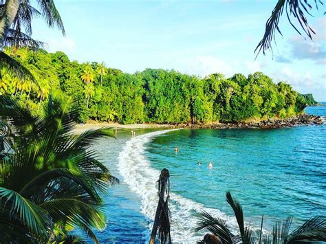 boutique cuisine top 10 beaches in tobago caribbean travel inspiration