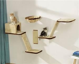 Jouets Pour Chats D Appartement : ce qu 39 il faut savoir sur un chat qui ne joue pas ~ Melissatoandfro.com Idées de Décoration