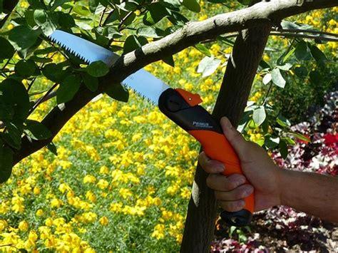 Garten Primus Foldesav  Hartving Aps