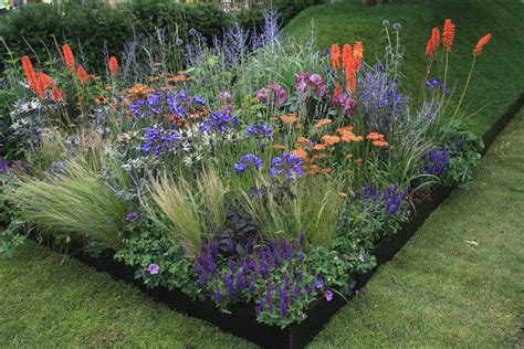 plants for garden a little preview of r h s hton court palace flower show 2014 growing nicely