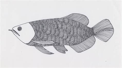9 sketsa gambar ikan hias dan ikan konsumsi yang mudah dibuat