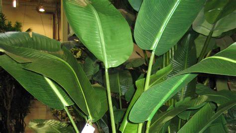 Artificial Tropical Palms & Plants Plantworks
