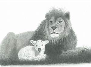 The Lion And The Lamb Drawing by EJ John Baldwin