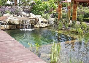 Gartengestaltung Pool Beispiele : gartengestaltung schwimmteiche fotos wellnessgarten ~ Articles-book.com Haus und Dekorationen