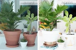 Creation Avec Des Pots De Fleurs : diy customiser ses pots de fleurs diy garden plants ~ Melissatoandfro.com Idées de Décoration