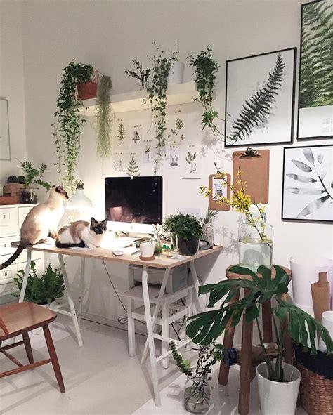 Bedroom Inspiration Plants by Best 25 Plants In Bedroom Ideas On