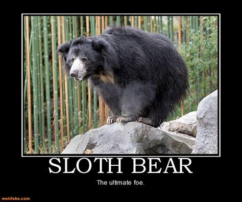 positive quotes  cute sloths quotesgram