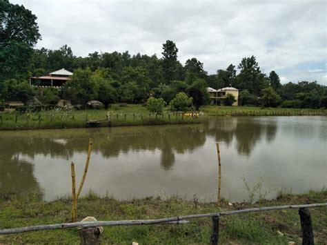 kanha lake resort